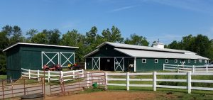 Blue Point Stable - Horse Boarding