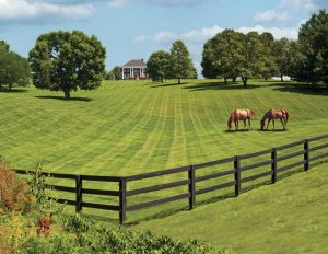 Traditional Horse Fence Ideas with The Craftsman Style